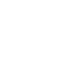 Stop / Play Audio